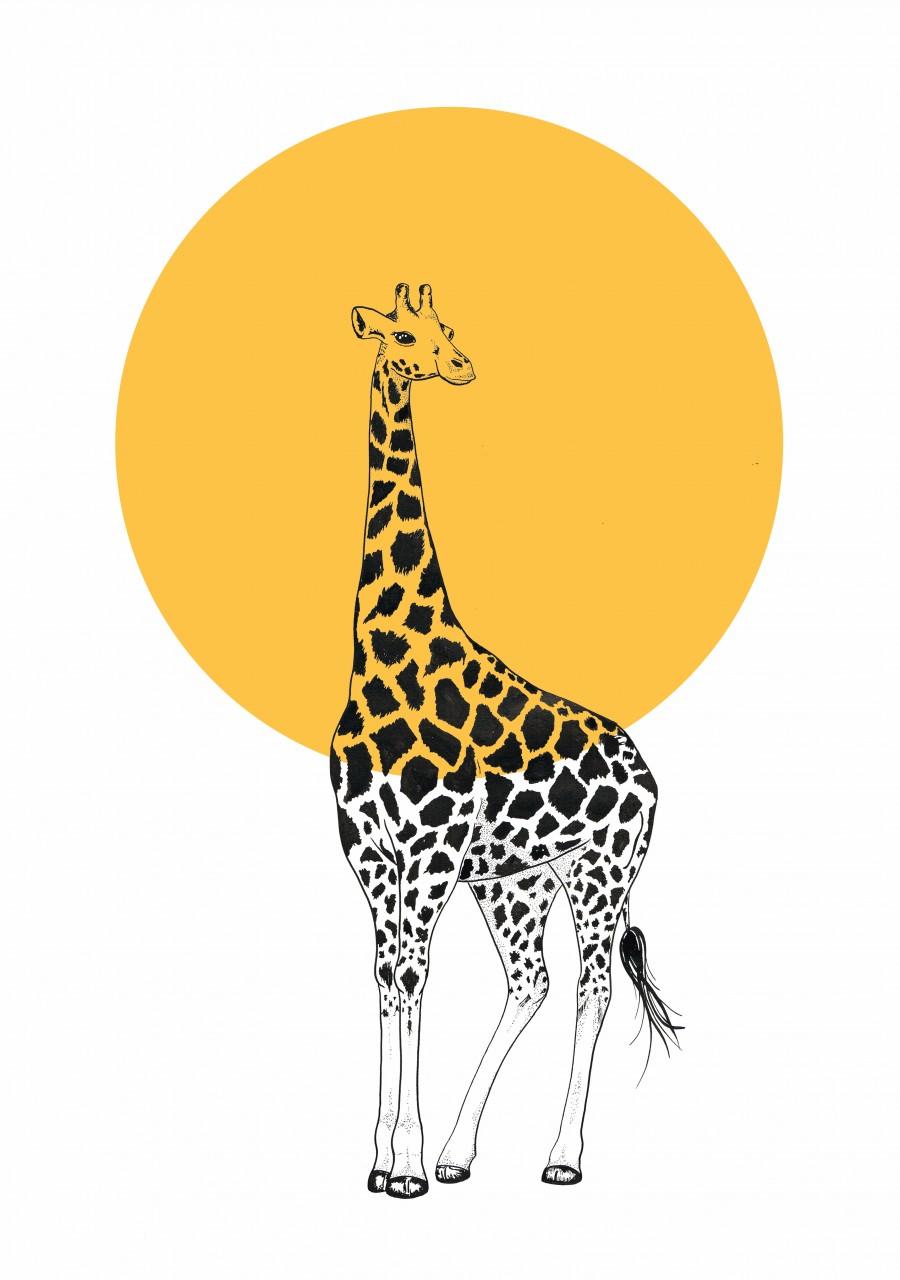 Giraffe.circle