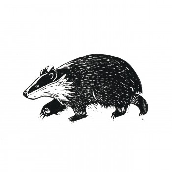 Badger_square
