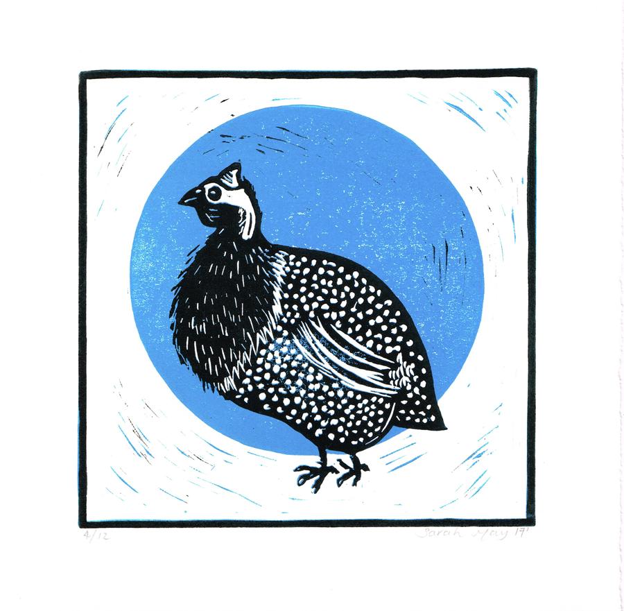 blue.guinea.fowl